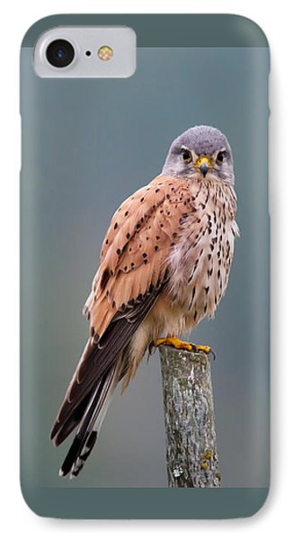 Perching IPhone Case