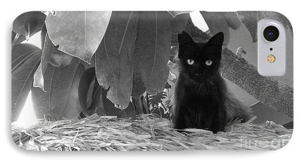 Pet Portrait - Boo IPhone Case