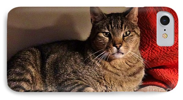 Pet Portrait - Max The Cat IPhone Case