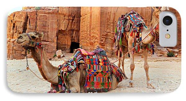Petra Camels IPhone Case