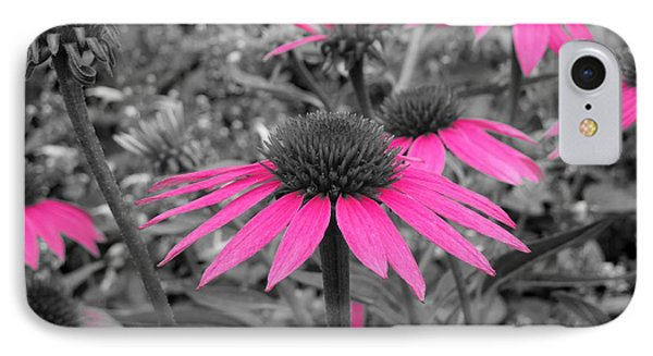 Pink Cone Flowers IPhone Case