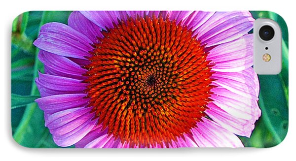 Pink Daisy By Jan Marvin IPhone Case