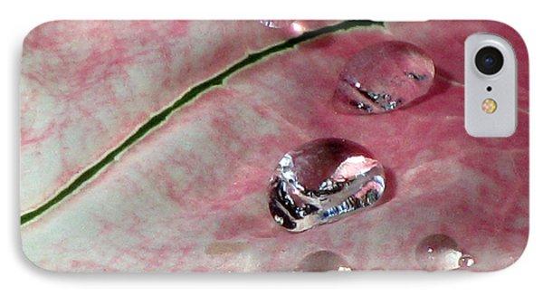 Pink Fancy Leaf Caladium - September Tears IPhone Case