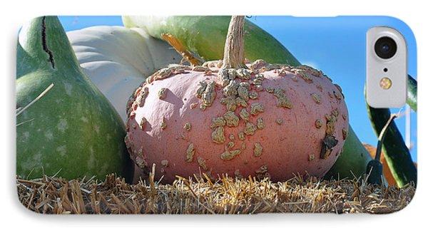 Pink Pumpkin And Friends IPhone Case