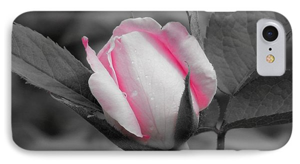 Pink Rose On Black And White IPhone Case