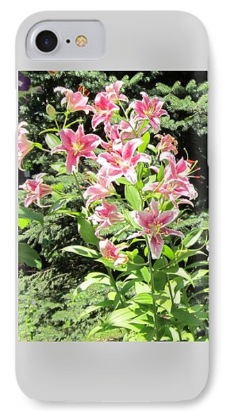 Pink Stargazer Lilies-greeting Card IPhone Case