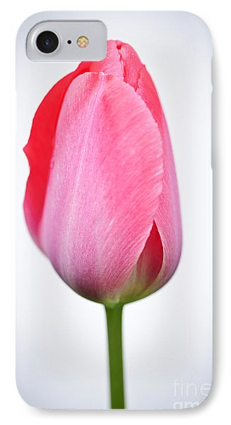 Tulip iPhone 8 Case - Pink Tulip by Elena Elisseeva