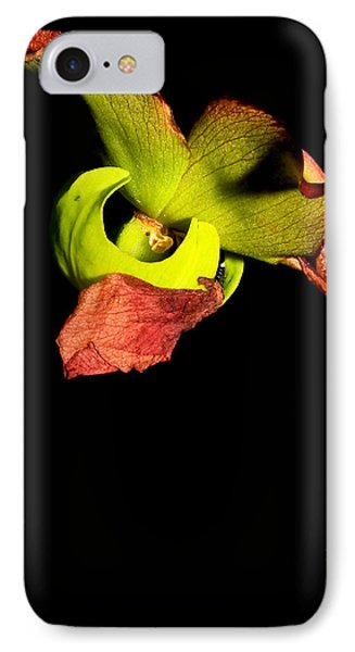 Pitcher Me Perfect.... IPhone Case