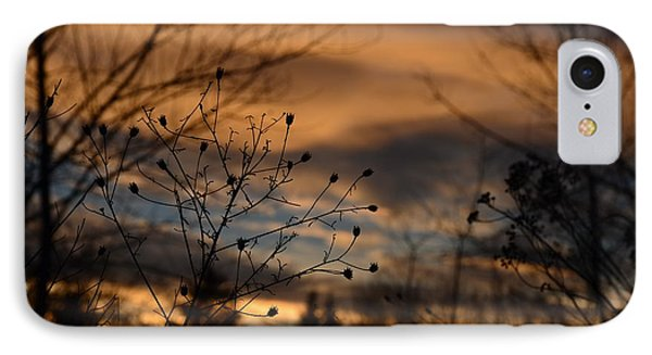 Planted Sunset IPhone Case