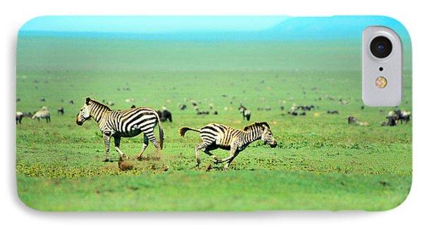 Playfull Zebras IPhone Case