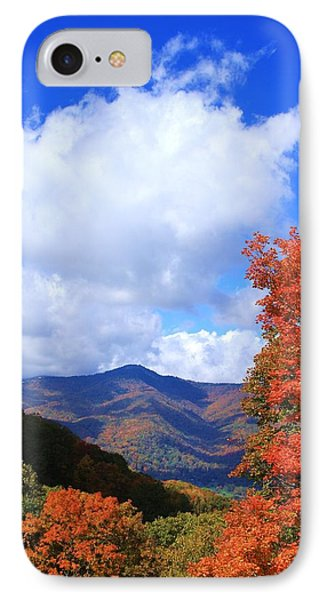 Plott Balsam Mountains Foliage IPhone Case