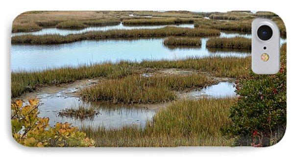 Plum Island Marshes In Autumn 2 IPhone Case