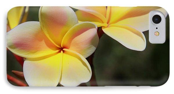 Plumeria Frangipani IPhone Case