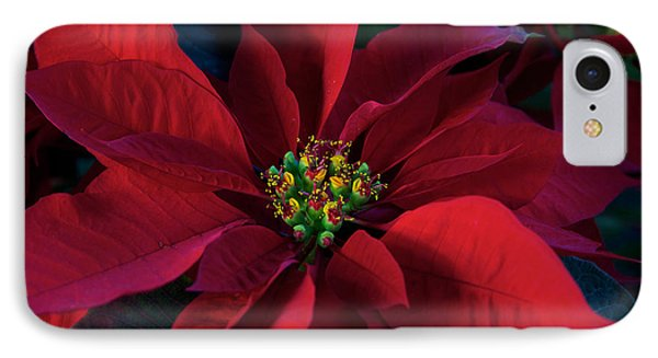 Poinsettia All Profits Go To Hospice Of The Calumet Area IPhone Case