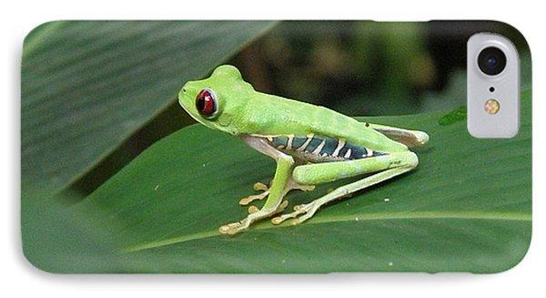 Poison Dart Frog IPhone Case