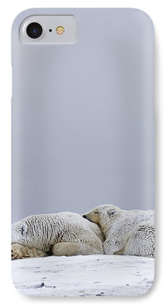 Polar Bear Sow With Cub Resting IPhone Case