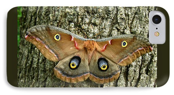 Polyphemus Moth IPhone Case