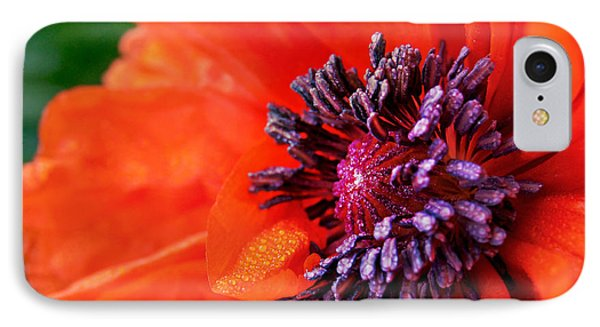 Poppy's Purple Passion IPhone Case