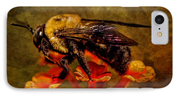Portrait Of A Bee IPhone Case
