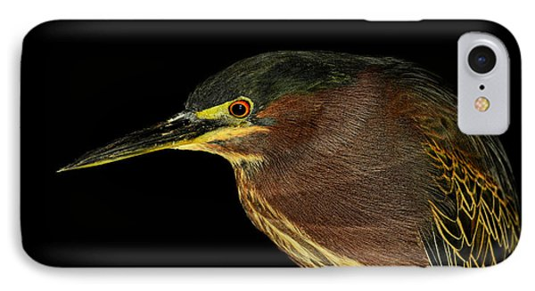 Portrait Of A Green Heron IPhone Case