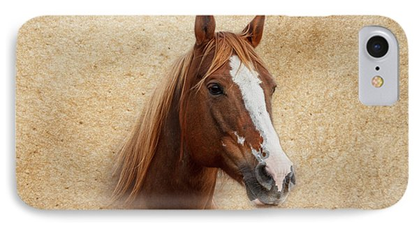 Portrait Of A Mare Print IPhone Case