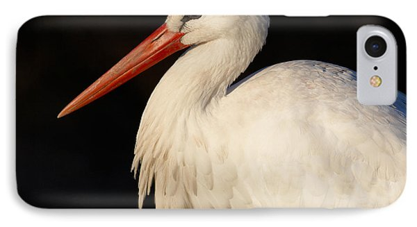 Portrait Of A Stork With A Dark Background IPhone Case
