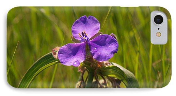 Prairie Wild Flower IPhone Case