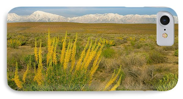 Princes Plume And Mount Tom - Spring Wildflowers Owens Valley Eastern Sierra California IPhone Case