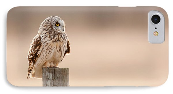 Profile Of A Short-eared Owl 1 IPhone Case