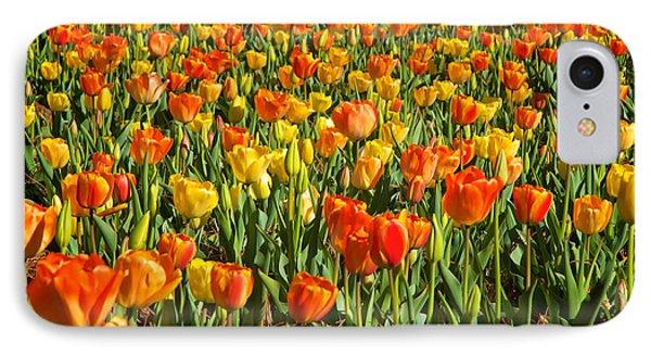 Profusion Of Tulips Biltmore Estate Nc IPhone Case
