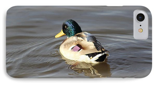 Proud Male Duck IPhone Case