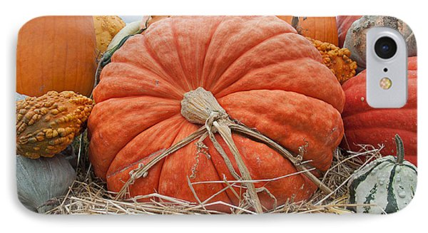 Pumpkin Times IPhone Case
