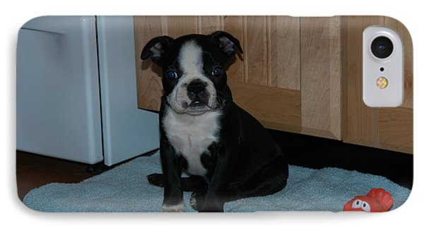 Puppy Boston Terrier And Toy IPhone Case