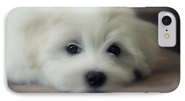 Puppy Eyes IPhone Case
