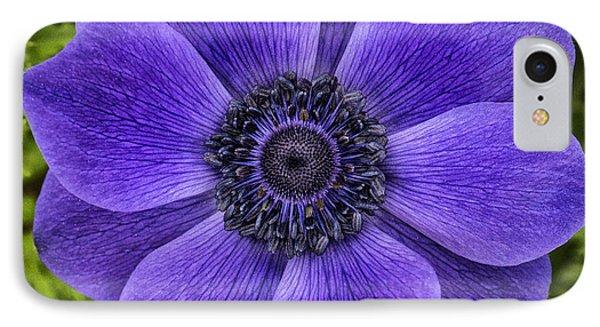 Purple Blue Anemone IPhone Case