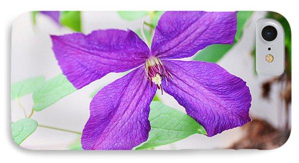 Purple Climbing Vine IPhone Case