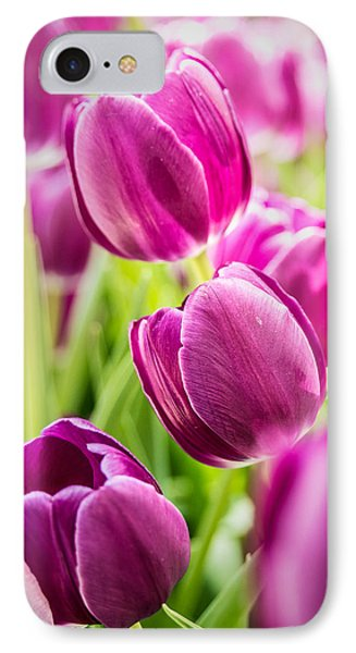 Purple Tulip Garden IPhone Case