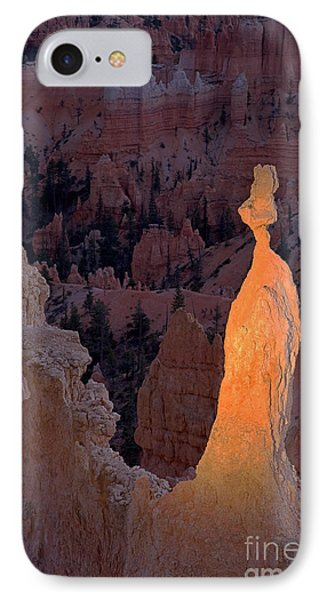 Rabbit Sunset Point Bryce Canyon National Park IPhone Case
