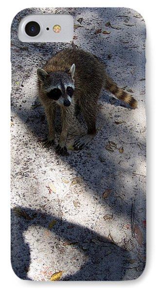 Raccoon 0311 IPhone Case