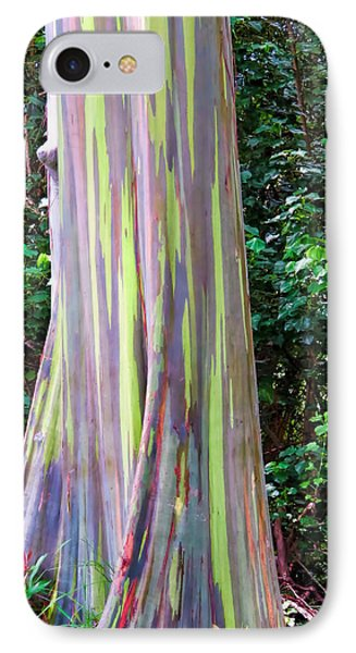 Rainbow Eucalyptus 3 IPhone Case