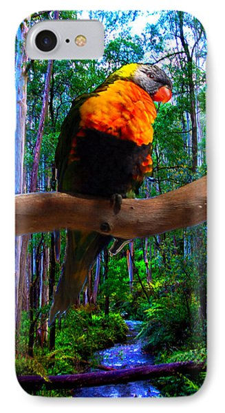 Rainbow Of The Forest IPhone Case
