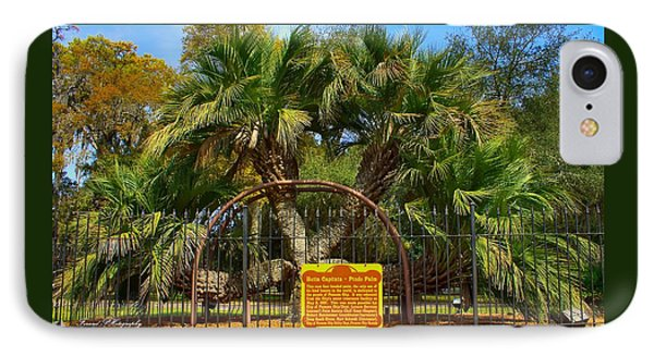 Rare Palm Tree IPhone Case