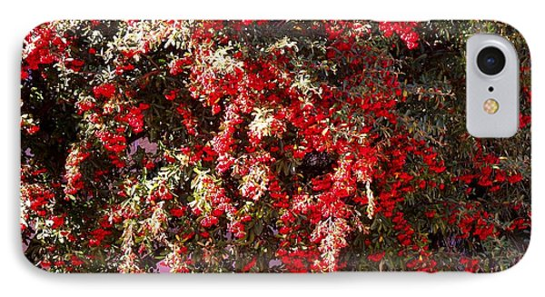 Red Berry Bushes IPhone Case