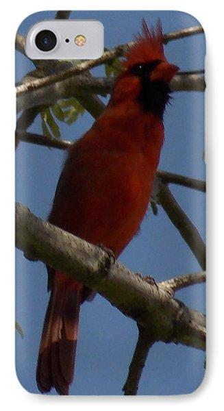 Red Bird 2 IPhone Case