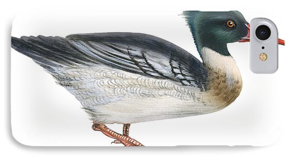 Red-breasted Merganser IPhone Case