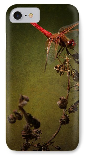 Red Dragonfly On A Dead Plant IPhone Case