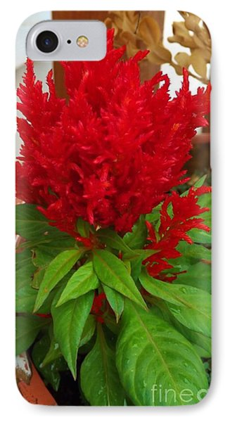 Red Flame Flower IPhone Case