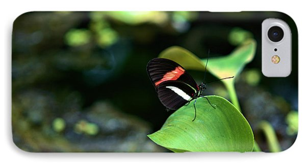 Red White Black Butterfly IPhone Case