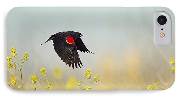 Red Winged Blackbird In Flight IPhone Case