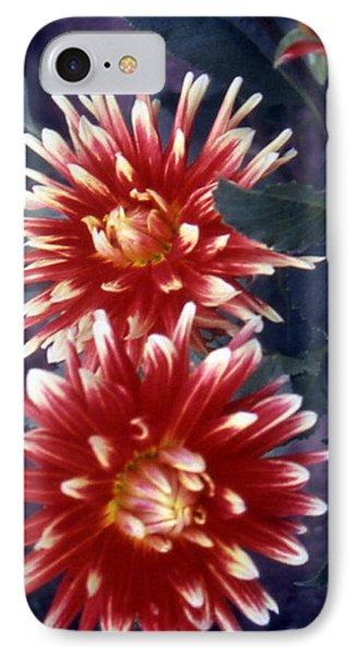 Red Dahlia IPhone Case